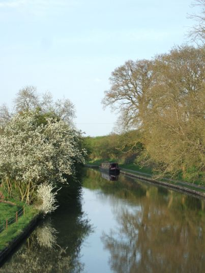 Canal in spring