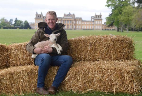 Henson and Lamb