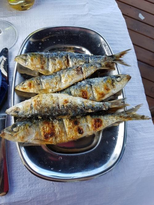 Porto3 sardinhas