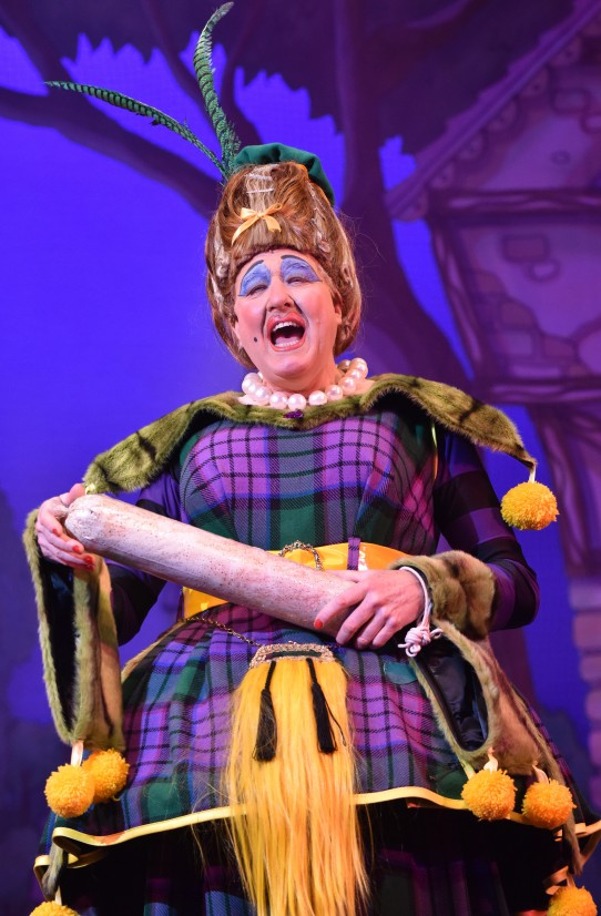 Iain Lauchlan in Cinderella at the Belgrade Theatre - Credit Robert Day