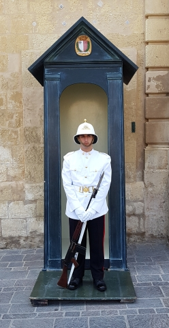 Soldier protecting the Royal Palace